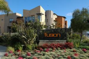 31 fusion complex